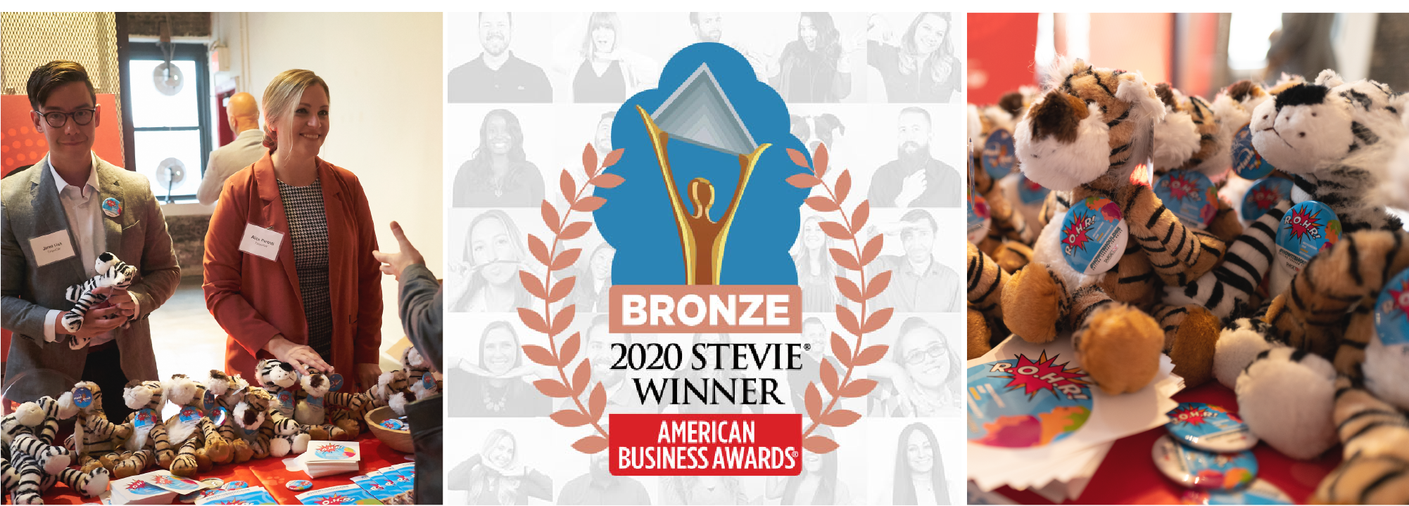 Stevie Award, TargetCW wins Bronze Stevie® Award for Corporate Social Responsibility Program of the Year