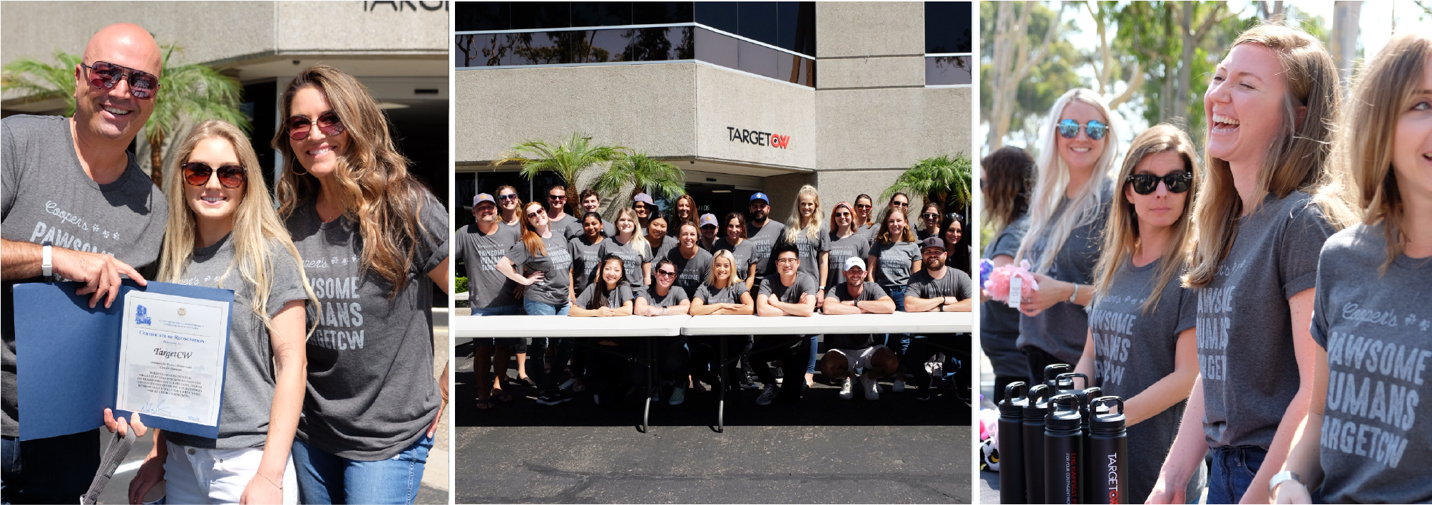 Company of the Year, Doing Big Things: TargetCW Wins Stevie® Award for Company of the Year!